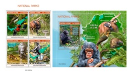 Sierra Leone 2019 National Parks Hippo Hippopotamus Monkey Birds MS+S/S SRL190804a - Stamps