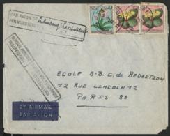 """CONGO BELGE """"LUEBO"""" SURTAXE AERIENNE INSUFFISANTE. Obl. C-à-d Sur N° 307 + 314 (x2). Sur Env. Pour La France. - Belgian Congo"""