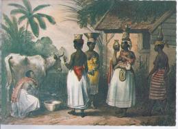AK-div.31- 826  Suriname -  Melktragende Negerinnen - Suriname