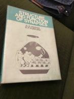 -strutture E Funzioni Della Sinapsi - Books, Magazines, Comics