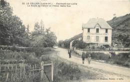 CPA 44 Loire Atlantique Inférieure Le Cellier Clermont Sur Loire La Route Du Cellier Et L'Hôtel Belle Vue - Le Cellier