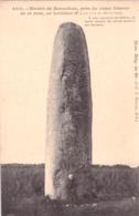 29 - Finistere -   LANILDUT - Menhir De Kercadiou Pres Du Vieux Manoir De Ce Nom - France