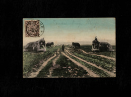Cartolina Cina Beijin - Peking Ming Tomb - Cina