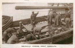 GREAT YARMOUTH - Unloading Herring, Bateau De Pêche. - Pêche
