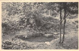 Brûly-de-Pesche - Fontaine D'Hitler - Couvin