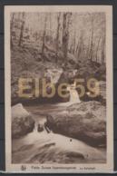 Echternach (Luxembourg) Petite Suisse Luxembourgeoise, Le Hallerbach, écrite 1934, Cachet Convoyage - Echternach