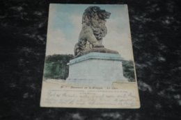 7465    LA GILEPPE, LE LION - 1905 - Gileppe (Barrage)