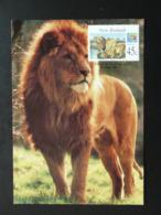 Carte Maximum Card Lion New Zealand (ref 85067) - FDC