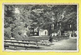 * Edegem - Edeghem (Antwerpen - Anvers) * (Nels, Ern Thill) Grot OLV Van Lourdes, Grotte ND De Lourdes, Rare Old - Edegem