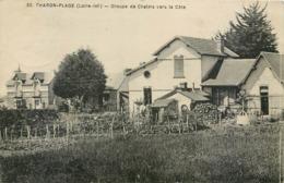 CPA 44 Loire Atlantique Inférieure Tharon-Plage Groupe De Chalets Vers La Côte - Tharon-Plage