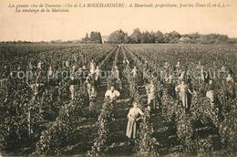 13572689 Joue-les-Tours Les Grands Vins De Touraine Joue-les-Tours - Frankreich