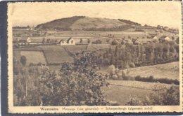 WESTOUTRE - Montaigu (vue Générale) SCHERPENBERGH (algemeen Zicht) - Heuvelland