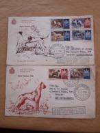 Saint-Marin Chiens Fdc 1954 - FDC