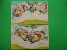 Lot 2 Carte Humoristique Couple Cochon Mariage Amour Et Raison - Varkens