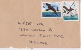 Île Ascension Island Air Mail Cover 1978 To London Bird Stamp Timbre Oiseau Pétrel - Ascension (Ile De L')