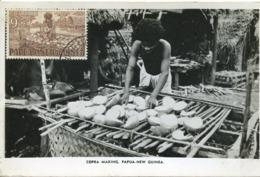 47929 Papua  New Guinea, Maximum 1960   9d. Showing  A  Copra Makingpapua - Papoea-Nieuw-Guinea