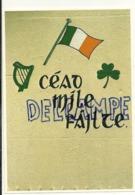Irlande. An Irish Greeting. One Hundred Thousand Welcomes!. Drapeau. Photograph T. Kelly - Irlande