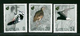 LITUANIA  LATUIJA  - 1995  -  UCCELLI - Lituania