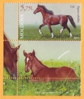 2019 Moldova Moldavie Fauna. Domestic Animals. Horse Equus Caballus Mint - Farm