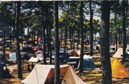 85. ST HILAIRE DE RIEZ.( ENVOYÉ DE). CAMPING EN VENDEE. ANNÉE 1965 + TEXTE - Saint Hilaire De Riez