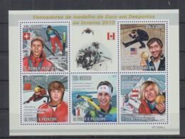J690. S.Tome E Principe - MNH - 2010 - Sport - Winter Sports - Briefmarken