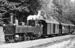 StLB Feistritztalbahn,in Ober Feistritz, Ungelaufen - Trains