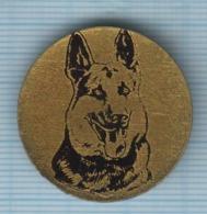 USSR / Badge / Soviet Union / RUSSIA Fauna. Dog. German Shepherd . - Animales