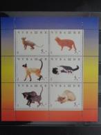 CHUVASHIA 1998 BLOC DE 6 TIMBRES - CHATS DIVERS - 1992-.... Fédération