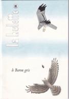 La Hulotte Des Ardennes, N° 63 ; Le Buzard Cendré - Nature