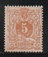 BELGIQUE - N°28 *  (1870) 5c Ambre - 1869-1888 Leone Coricato