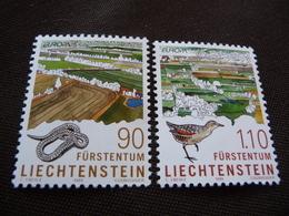TIMBRES  EUROPA  1999      LIECHTENSTEIN    N  1131 / 1132    COTE  4,00 EUROS   NEUFS  LUXE** - 1999