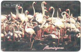 Tanzania - TTCL (Chip) - Flamingos - 10Units, Gem5 Red, 4 Lines Text, 2002, Used - Tanzania