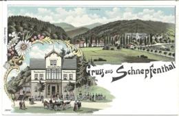 GRUIS AUS SCHNEPFENTHAL - THURINGEN - GERMANY - Andere
