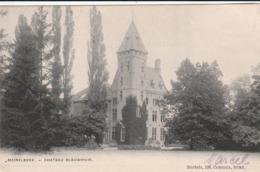 MERELBEKE  CHATEAU BLAUWHUIS - Merelbeke
