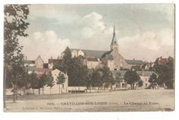 45 - CHATILLON-sur-LOIRE - Le Champ De Foire - Chatillon Sur Loire