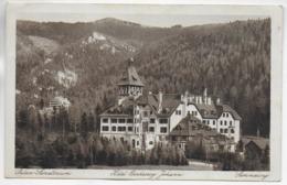 AK 0334  Semmering - Hotel Erzherzog Johann & Palace-Sanatorium / Verlag Ledermann Um 1926 - Semmering