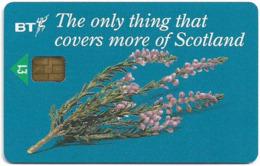 UK - BT (Chip) - BCI-054 - Scottish Heather, 1£, 6.000ex, Used - BT Internas