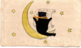 RACINE - Chat Noir En Feutrine Sur La Lune - Gatos