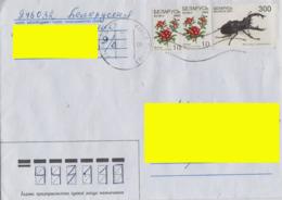 2004 Belarus Addressed Cover From Gomel. 2 Stamps Lingonberry, Lucanus Cervus. - Belarus