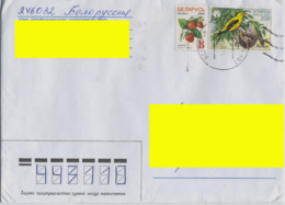 "2004 Belarus Addressed Cover From Gomel. 2 Stamps: Strawberry (Litera ""B""), Birds (Oriolus Oriolus). - Bielorussia"