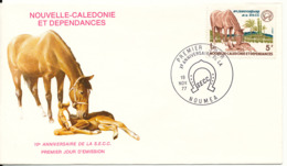 New Caledonia FDC 19-11-1977 HORSES With Cachet - FDC