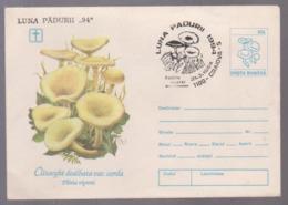 Mushrooms  Postal Stationery Romania 1994 With Special Postmark Forest Month Craiova 1994 - Mushrooms