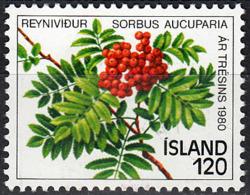 ICELAND  SCOTT NO. 530     MINT HINGED     YEAR  1980 - Neufs