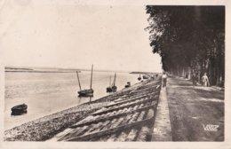 1717 SAINT VALERY SUR SOMME                                La Digue Cote Ouest - Saint Valery Sur Somme