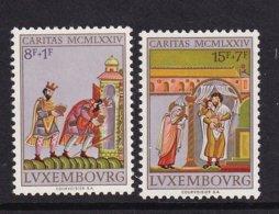 Luxembourg 1974, Minr 896-897, MNH. Cv 4,50 Euro - Neufs