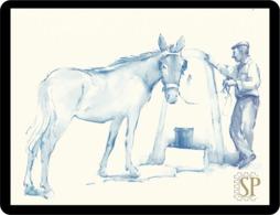 Reproduction D'une Aquarelle Cul Reproduction Of Watercolor Donkey Reproduktion Aquarells Esel Ezel дупу - Acuarelas