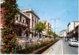 ROVIGO  Palazzo Delle Poste  Auto Car - Rovigo