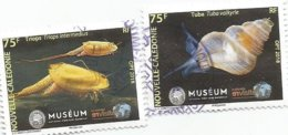 N Ouveauté    Muséum  (pag20) - Oblitérés