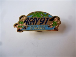 PINS 6ème INTER SPORT CNRO AGAY 91 83 VAR / Base Dorée / 33NAT - Badges