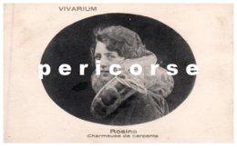 Rosina  Charmeuse De Serpents - Cirque